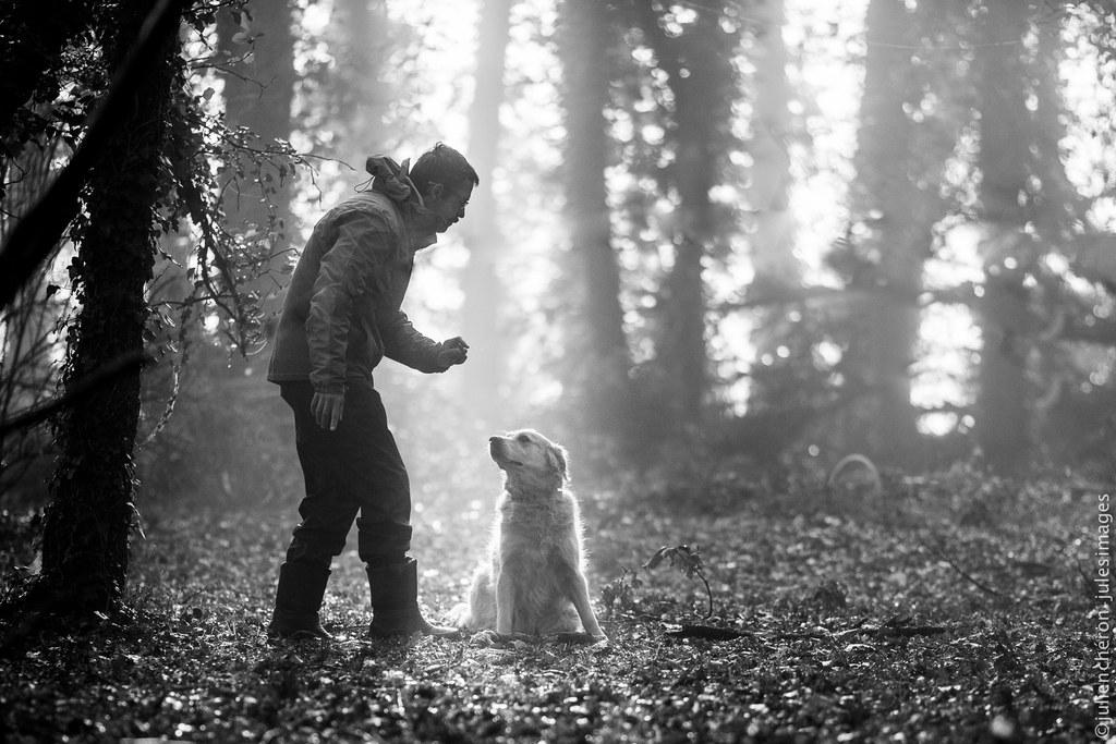 éducateur canin vienne poitiers 86