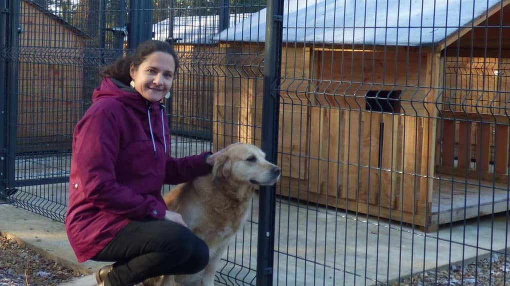 pension canine poitiers vienne